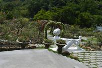 广州云台花园月季园景观