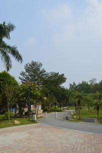 永泰公园绿道转角景观
