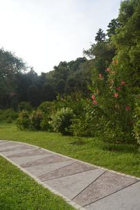 云溪生态公园扶桑园景观