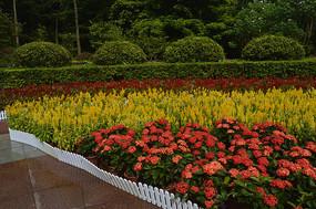 云溪生态公园花圃园艺景观