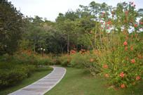 云溪生态公园绿道花卉