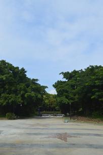 广州新体育馆广场绿化景观
