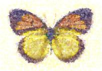 蝴蝶印花花型