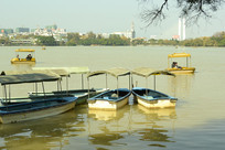 惠州西湖的游船
