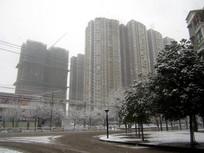 清镇市区雪景