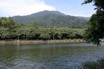 新会圭峰山玉湖漂亮的湖面