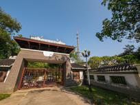 高榜山茶园