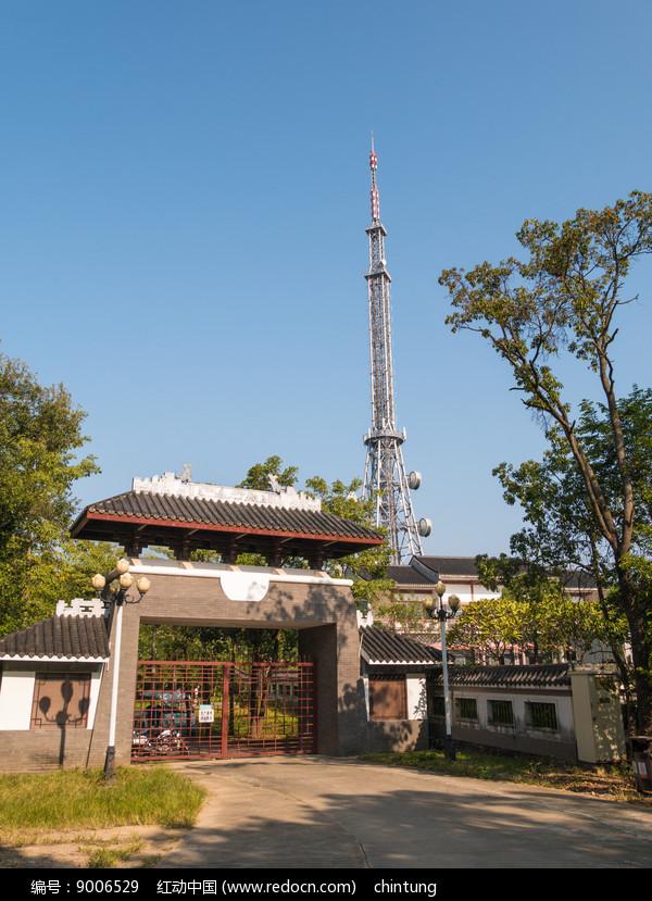 高榜山茶园与电视塔图片