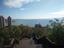 海边城市风景