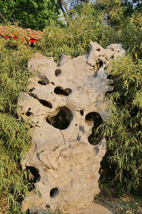 林中的太湖石