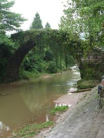 绿树包裹的古老石桥