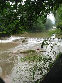 树林间穿过的小河