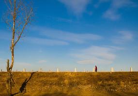 一棵树与河堤上行走的红衣人