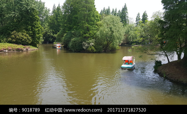 滨江森林公园的游船图片
