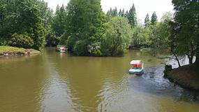 滨江森林公园的游船