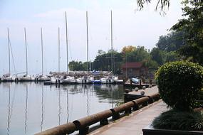湖边的步道与树林