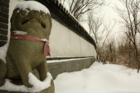 积雪墙壁石狮子
