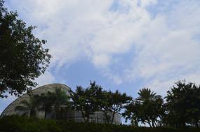 云台花园树木掩映的温室建筑