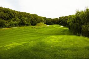 高尔夫球场一角
