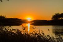 芦苇小桥夕阳西下