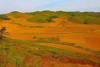 山坳中的农田