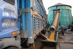 粮仓运输机卡车