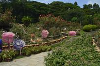 云台花园玫瑰月季园美化景观