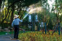 宁乡市民公园辛勤浇灌的园丁