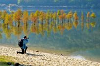 拍照的男生风景秋