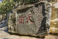 山石上的篆刻书法