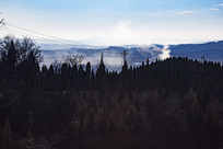 树木后面的太行山
