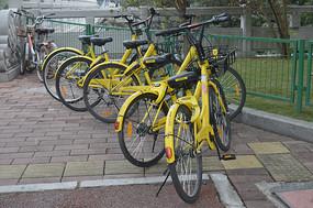 一排共享单车