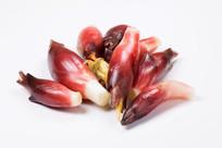 姜科植物阳荷蒴果