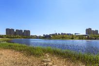 高档住宅湿地草地民居