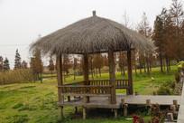 森林茅草屋