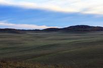 乌兰布统草原清晨牧场