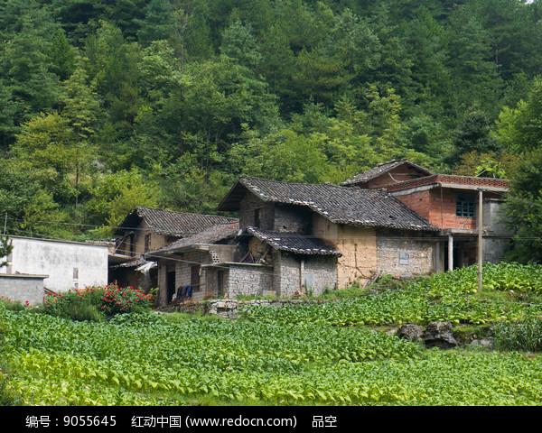 巫山红椿土家族乡少数民族民居图片