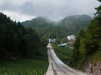 乡村通向远方的公路