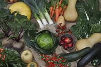 多种蔬菜汇聚摄影