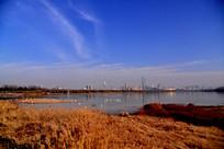 蓝天下三门峡天鹅湖