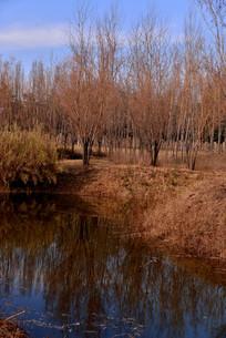 三门峡天鹅湖湖水