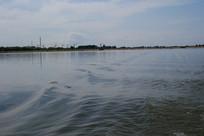 波波荡漾的河流