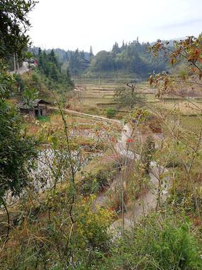 胜利侗寨归村自然寨风景
