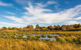 草原上的沼泽地