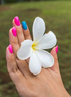 手中的鸡蛋花