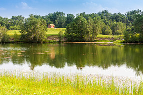 夏季的草原风景