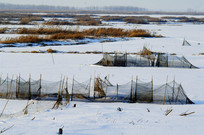 冬季的鱼网