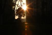 小区的晨光