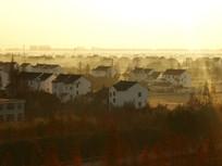 冬日乡野薄雾