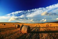 农田草捆景观